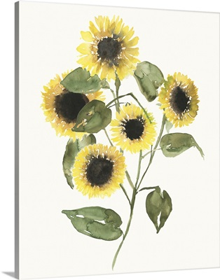 Sunflower Composition II
