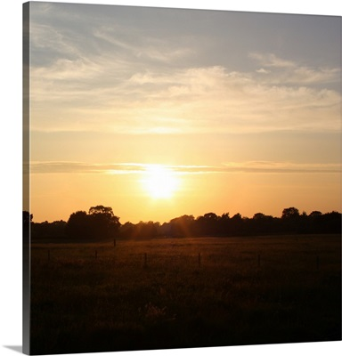 Sunset Field I