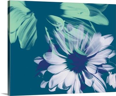 Teal Bloom I