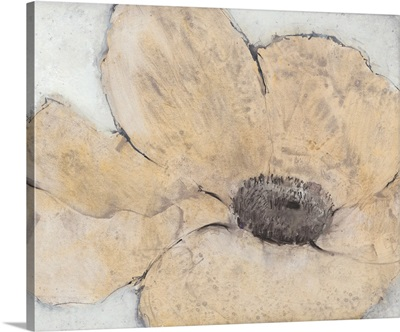 Transparency Flower IV