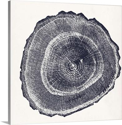 Tree Ring III