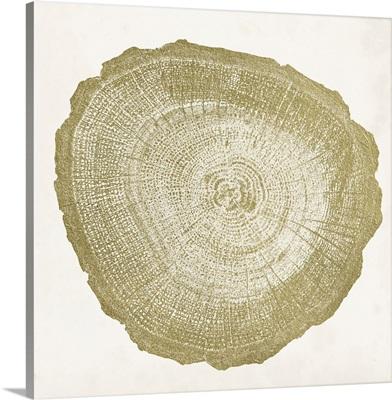 Tree Ring IV