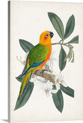 Tropical Bird & Flower I