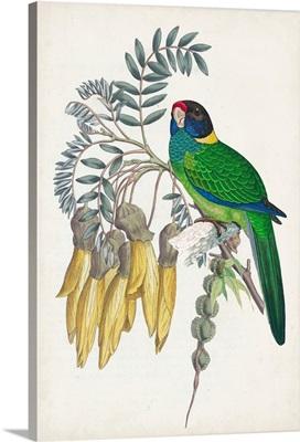 Tropical Bird & Flower II