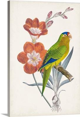 Tropical Bird & Flower III