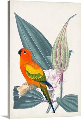Tropical Bird & Flower IV