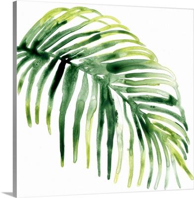 Tropical Jewel V