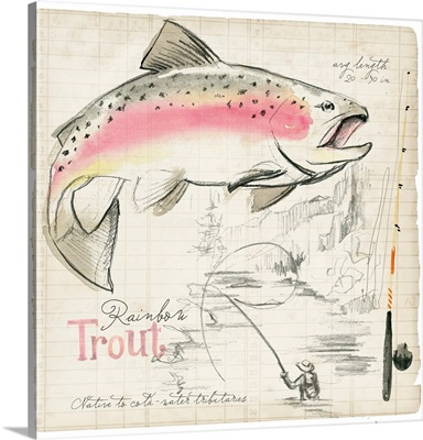 Trout Journal I