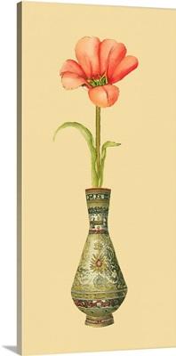Tulip in Vase II