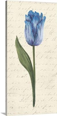 Twin Tulips III