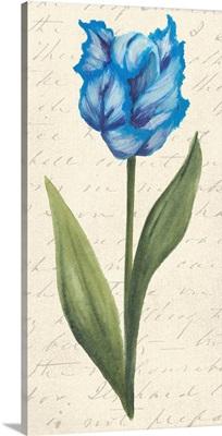 Twin Tulips IV