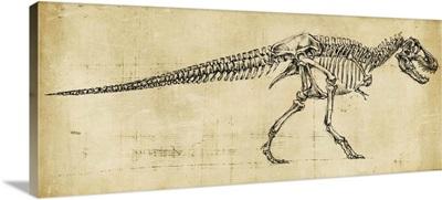 Tyrannosaurus Rex Study