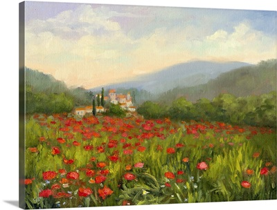 Umbrian Poppy Field