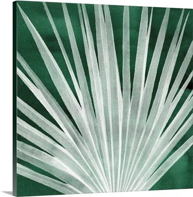 Velvet Palm I