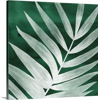 Velvet Palm II