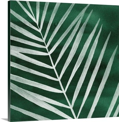 Velvet Palm III