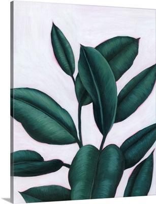 Verdant Ficus I