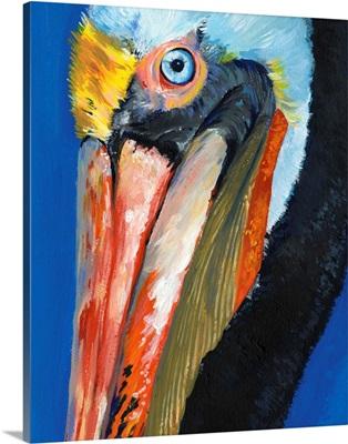 Vibrant Pelican I