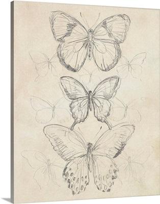 Vintage Butterfly Sketch I