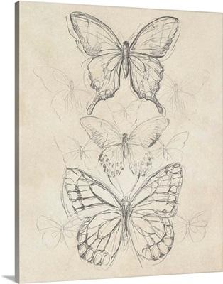 Vintage Butterfly Sketch II