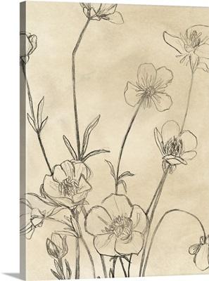 Vintage Wildflowers I