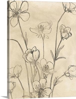 Vintage Wildflowers II