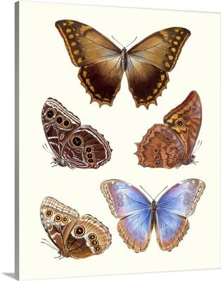 Violet Butterflies I