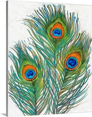 Vivid Peacock Feathers II
