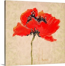 Vivid Red Poppies III