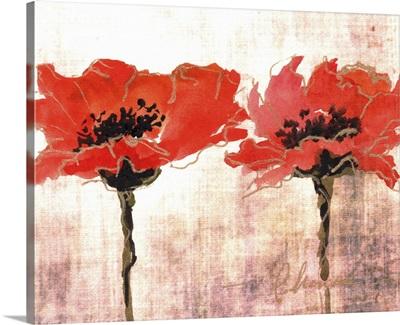 Vivid Red Poppies V