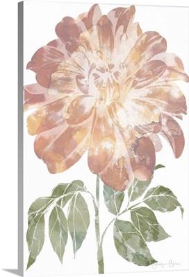Watercolor Bloom II