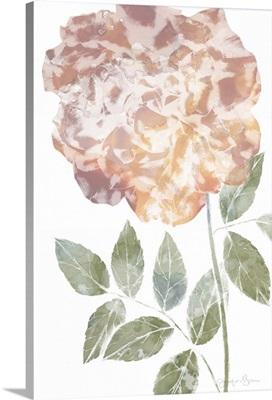 Watercolor Bloom III