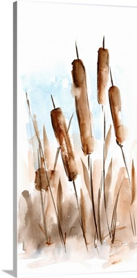 Watercolor Cattail Study II