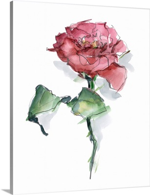 Watercolor Floral Contour I