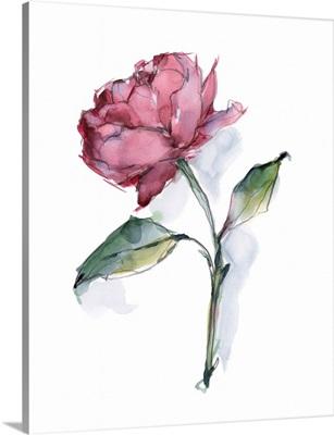 Watercolor Floral Contour III