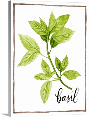 Watercolor Herbs I