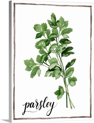 Watercolor Herbs II