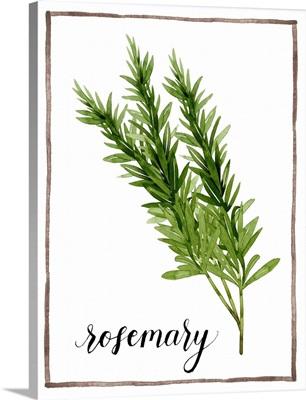 Watercolor Herbs V