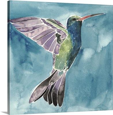 Watercolor Hummingbird I
