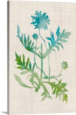 Watercolor Plants III