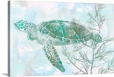 Watercolor Sea Turtle II