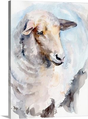 Watercolor Sheep I