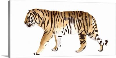 Watercolor Tiger III