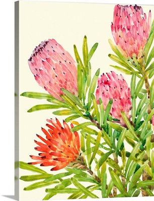 Watercolor Tropical Flowers I