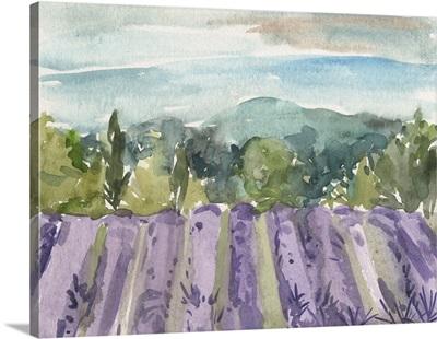 Watercolor Views III