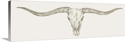 Western Skull Mount III