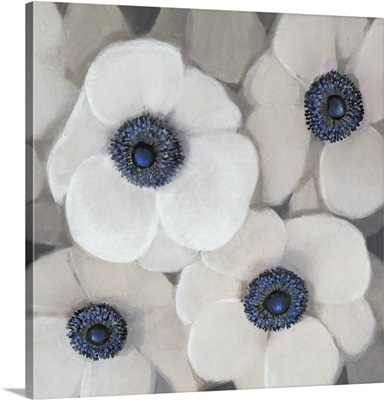 White Anemone II