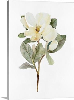 White Blossom VI