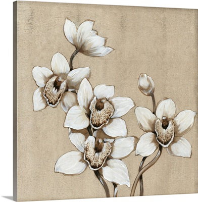 White Orchid I