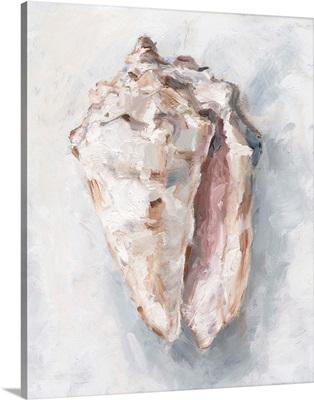 White Shell Study II